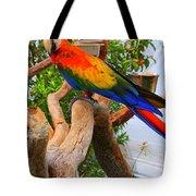 Brazilian Parrot Tote Bag