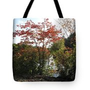 Break At Breakheart Tote Bag