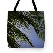 Break From The Sun Tote Bag