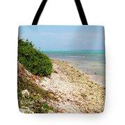 Breakers East Shore Tote Bag