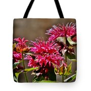 Breakfast At The Bee Balm Tote Bag