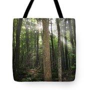Breakthrough Sun Tote Bag by Shannon Louder