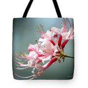 Breathtaking Beauty Tote Bag