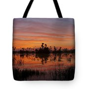 Breathtaking Florida Tote Bag