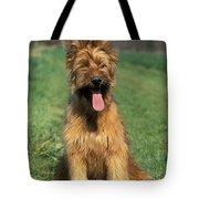 Briard Puppy Tote Bag