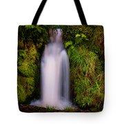 Bridal Dress. Waterfall At Benmore Botanical Garden. Nature Of Scotland Tote Bag