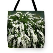 Bridal Wreath Spirea - White Flowers - Florist Tote Bag