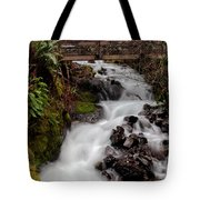 Lower Wahkeena Falls Tote Bag