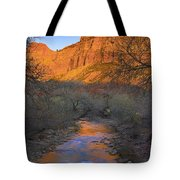 Bridge Mt And The Virgin River Zion Np Tote Bag
