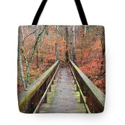 Bridge To Fall Tote Bag