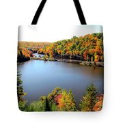 Old Bridge, New Bridge Tote Bag