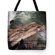 Bridging The Chasm 01 Tote Bag