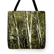 Briers And Brambles Tote Bag by Luke Moore