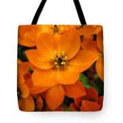 Bright And Lively Tote Bag