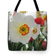 Bright Daffodils Tote Bag