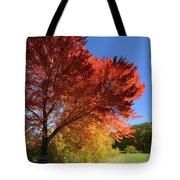 Bright Orange Of Fall Tote Bag