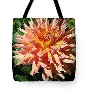 Bright Peachy Star Tote Bag