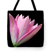Bright Pink Trumpet Lily  Tote Bag