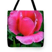 Bright Pink Tulip In Kuekenhof Flower Park-netherlands Tote Bag