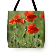 Bright Poppies 2 Tote Bag