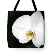 Bright White Orchid Tote Bag