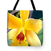 Bright Yellow And Red Cattleya Orchid Tote Bag