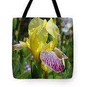 Bright Yellow Purple Iris Flower Irises Tote Bag