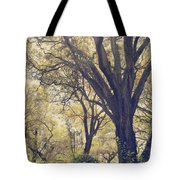 Brightening Up The Day Tote Bag by Laurie Search