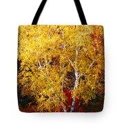 Brilliance Of Autumn On Rib Mountain Tote Bag