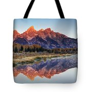 Brilliant Cathedral Tote Bag