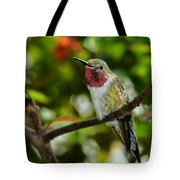 Brilliant Color Of The Ruby-throated Hummingbird Tote Bag