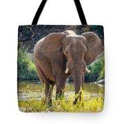 Brilliant Elephant Tote Bag