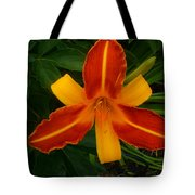Brilliant Orange Lily Tote Bag