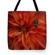 Brilliant Red Dahlia Tote Bag