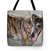 Brindle Greyhound Dog Usa Tote Bag