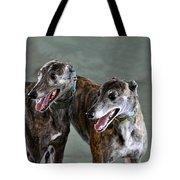 Brindle Greyhound Dogs Usa Tote Bag