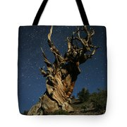 Bristlecone By Moonlight Tote Bag by Karen Lindquist