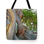 Bristlecone Pine On Ramparts Trail In Cedar Breaks National Monument-utah  Tote Bag