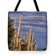 Bristlecone Warriors Tote Bag