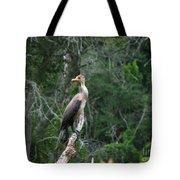 Bristol Cormorant Tote Bag