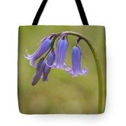 British Bluebell Hyacinthoides Non Scripta. Tote Bag