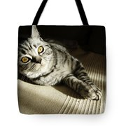 British Short Hair Tote Bag