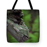 British Soldiers On The Trail Tote Bag