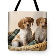 Brittany Dog Puppies In Basket Tote Bag