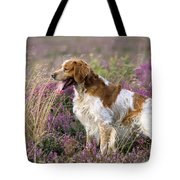 Brittany Dog, Standing In Heather, Side Tote Bag