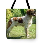 Brittany Dog, Standing Side Tote Bag