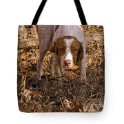 Brittany Spaniel Pixel's Pointed Woodcock Tote Bag
