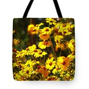 Brittle Bush In Bloom  Tote Bag