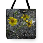 Brittlebush Flowers Tote Bag