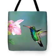 Broad-billed Hummingbird At Flower Tote Bag